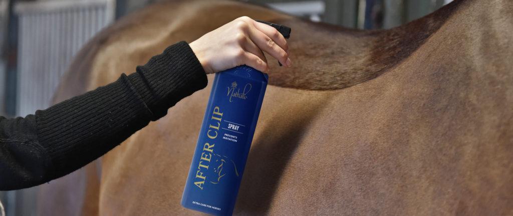 Daglig pleje til klippede heste