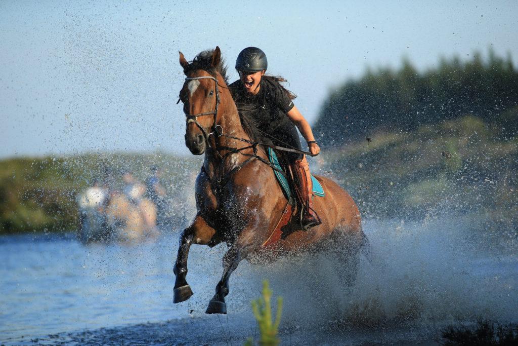 Ekstra forkælelse til din hest efter en lang dag